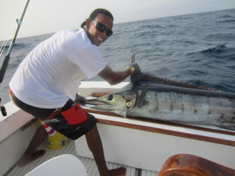Marlin or shark fishing Fishing in aruba